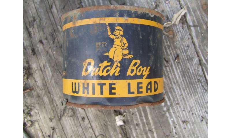 In kids even low lead levels can cause lasting harm for When was lead paint banned