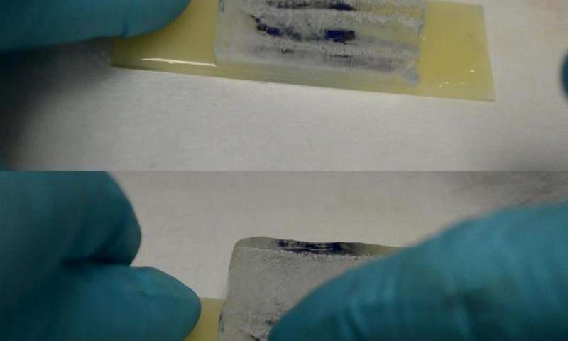Spray-on coating could ice-proof airplanes, power lines, windshields