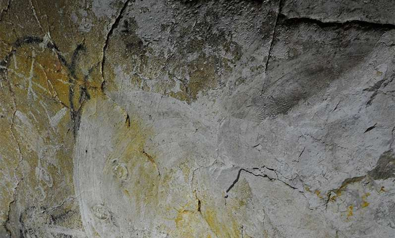 Radio-carbon study suggests Chauvet-Pont d'Arc cave art much older than thought