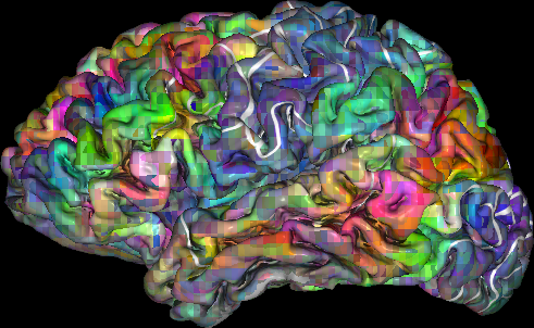 Brain's 'thesaurus' mapped to help decode inner thoughts