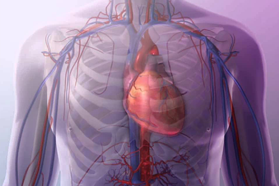 New study shows NHS weekend effect among heart patients