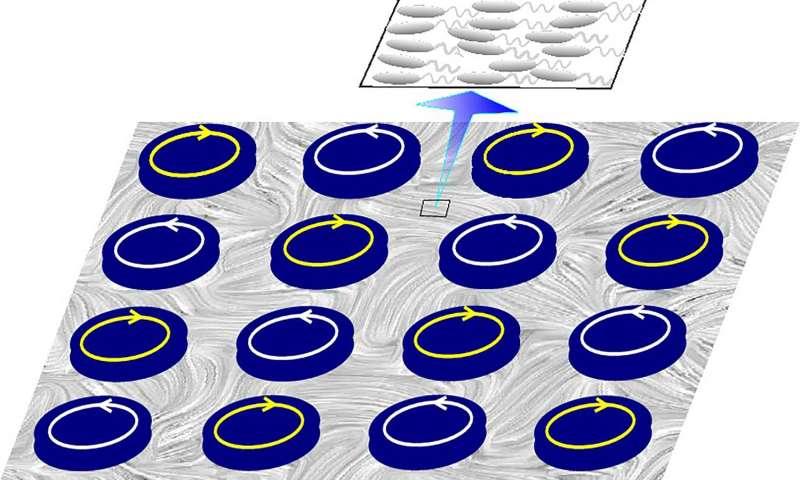 Scientists simulate tiny bacteria-powered 'windfarm'