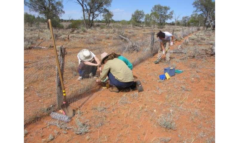 90 years of monitoring change in arid zone