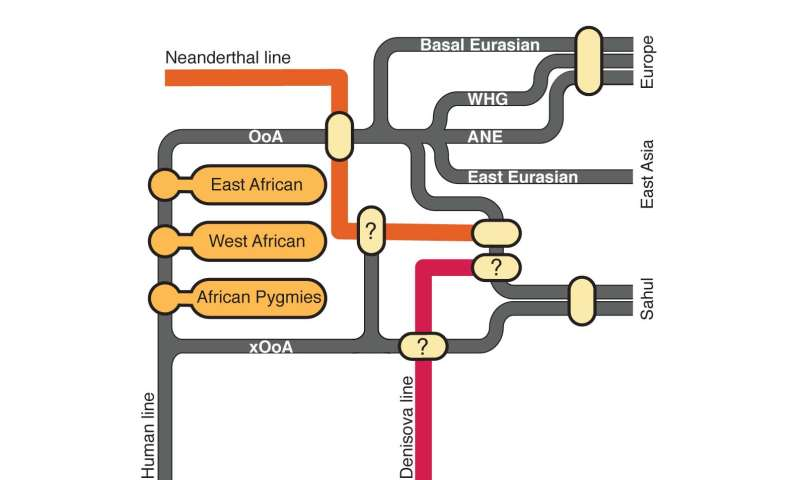 Human DNA tied mostly to single exodus from Africa long ago