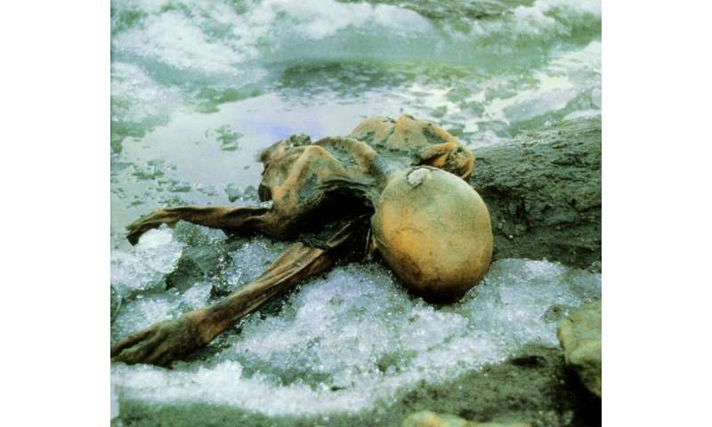 New findings give insight into life and death of 5000-year-old ice mummy