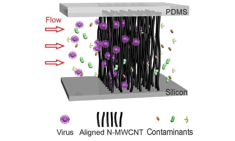 New, carbon-nanotube tool for ultra-sensitive virus detection and identification