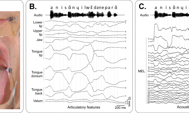 speech synthesizer designed to work out mouth movements into words