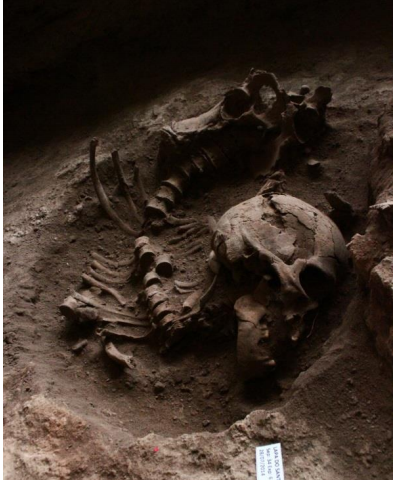 9,500-year-old funerary rituals involving the reduction of fresh corpses discovered in east central Brazil