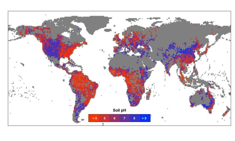 Researchers create global map of soil pH and illuminate how it ...