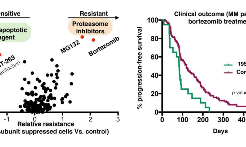 Naturally occurring mechanism of cancer drug-resistance may itself be a treatment target