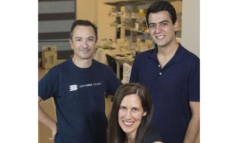 Researchers find way to ID many pathogens with few DNA probes