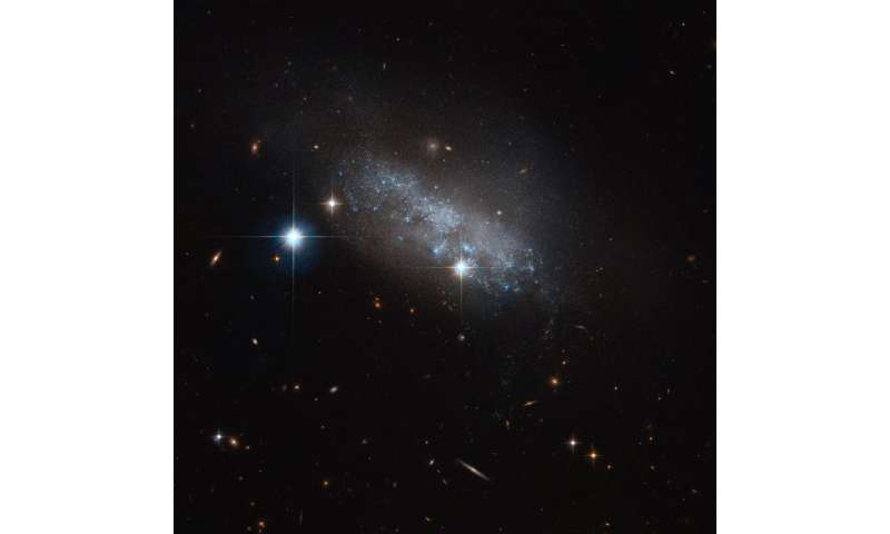 Image: Hubble spotlight on irregular galaxy IC 3583