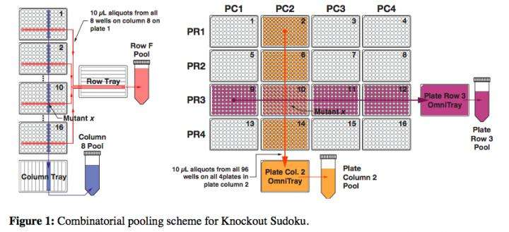 Researchers' Sudoku strategy democratizes powerful tool for genetics research
