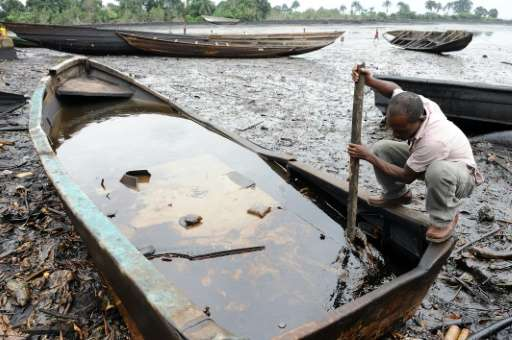 Environmental devastation to farming and fishing in the Niger Delta has for many come to symbolise the tragedy of Nigeria's vast