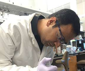 New method for strengthening hydrogels could direct stem cell growth