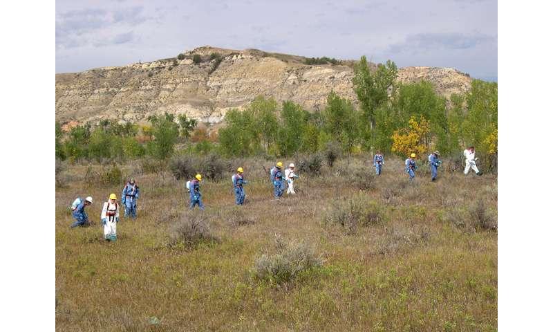 Research reveals widespread herbicide use on North American wildlands