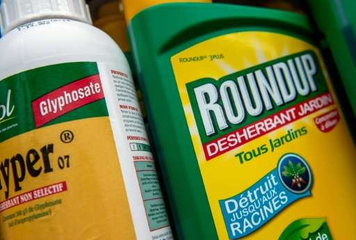 A bottle of Monsanto's 'Roundup' pesticide in a gardening store in Lille, France on June 15, 2015