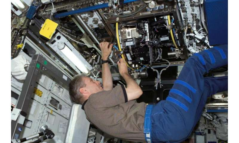 A decade of plant biology in space