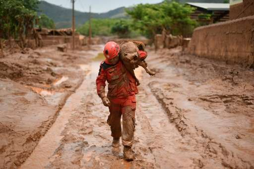 A fireman rescues a dog that was trapped in mud that swept through the village of Bento Rodrigues, in Minas Gerais, Brazil on No