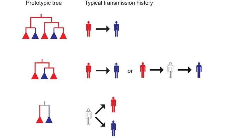 Analyzing genetic tree sheds new light on disease outbreaks