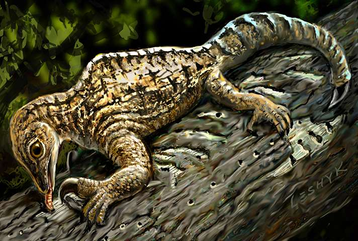 Ancient reptile fossils claw for more attention