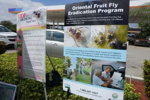 An information booth outside a gas station serves to educate the public about how to stop the Oriental fruit fly, on October 7,