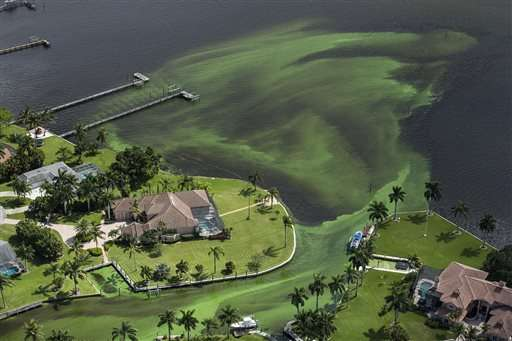 Army Corps to reduce lake flows fueling Florida algae bloom