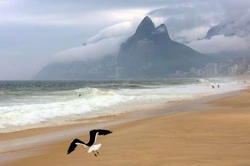 A seagul flies over Ipanema beach on a cloudy day in Rio de Janeiro