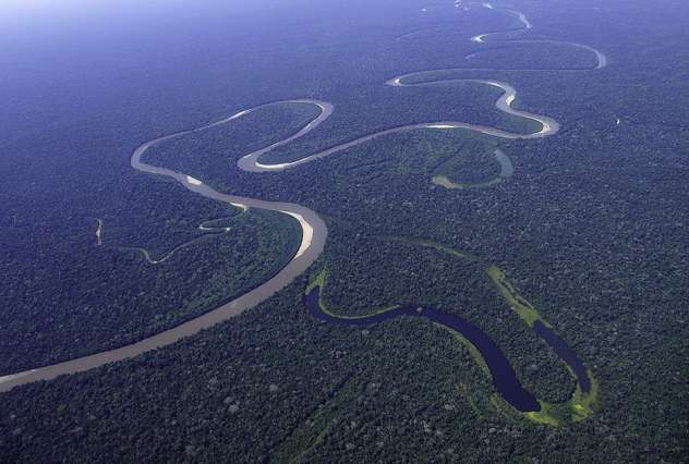 Assessing nature's carbon sinks