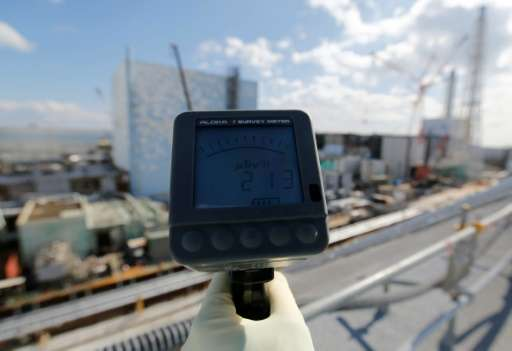 A TEPCO employee measures a radiation levels at the Fukushima nuclear power plant in Okuma, on February 10, 2016