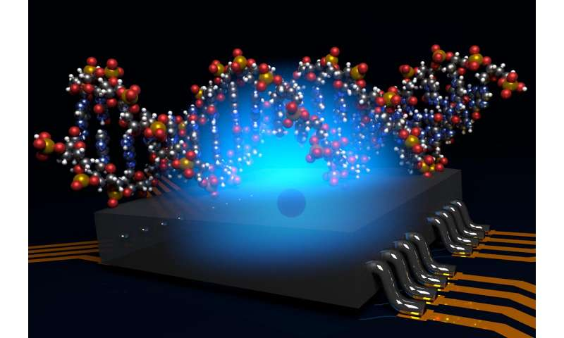 Atomic-scale MRI holds promise for new drug discovery