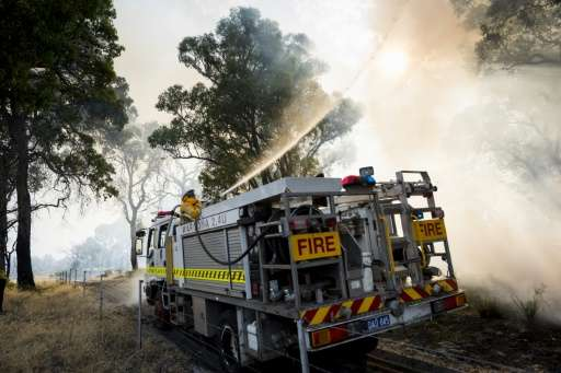 Australia's parliamentary upper house says it will hold an inquiry into bushfires in the forest to investigate the impact of glo