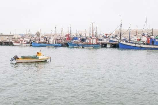 Better global ocean management