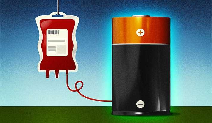 Blood molecule key to more efficient batteries