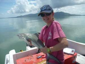 Blood reveals Great Barrier Reef sharks as homebodies
