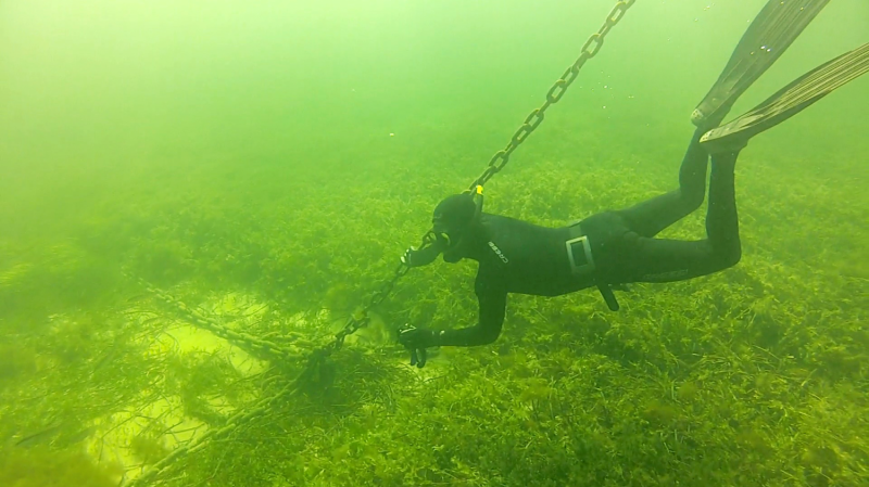 Boat mooring chains scour Rottnest (Australia) seagrass releasing CO2