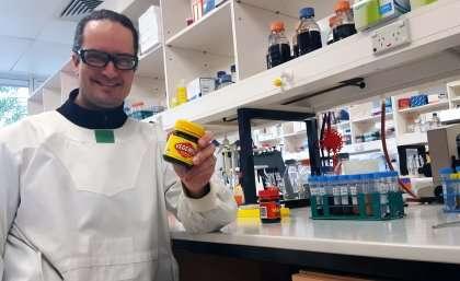 Brewing Vegemite beer for science