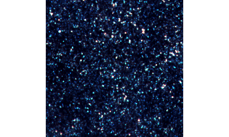 Bright dusty galaxies are hiding secret companions
