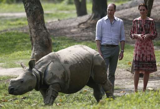 Britain's Prince William (L), Duke of Cambridge, and Catherine, Duchess of Cambridge, look at young rhino at the Centre for Wild