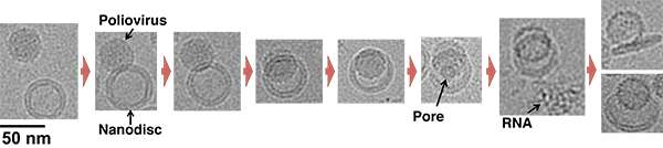 Building Better Nanodiscs