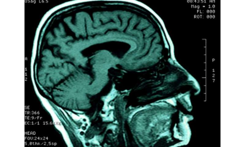 Can brain 'Pacemaker' improve lives of head trauma patients?