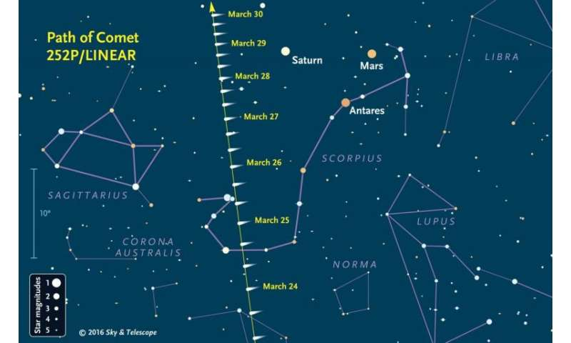 Comet 252P/LINEAR soars into predawn view this week
