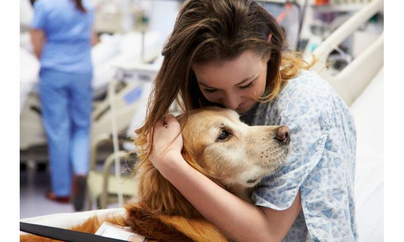 Comfort dogs bring healing in times of tragedy