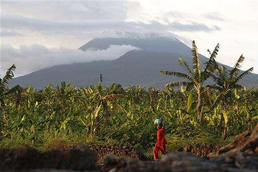 Congo volcano brings farmers rich soil but eruption threat