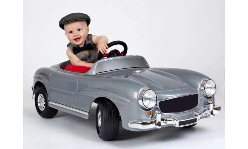 Conspicuous consumption may drive fertility down