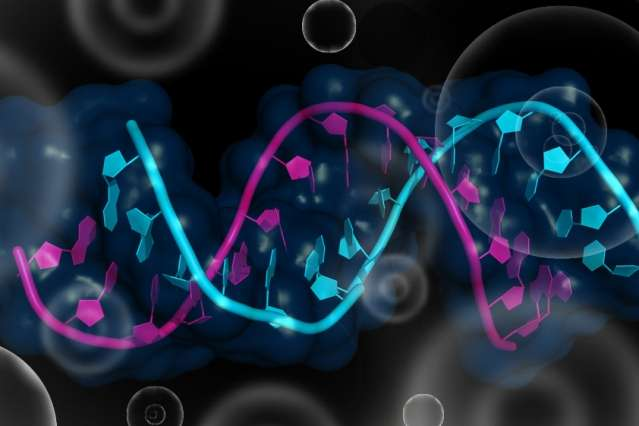 Controlling RNA in living cells: Modular, programmable proteins can be used to track or manipulate gene expression