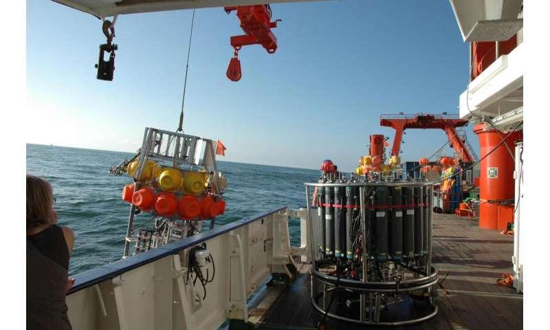 Conundrum of missing iron in oxygen minimum zones solved