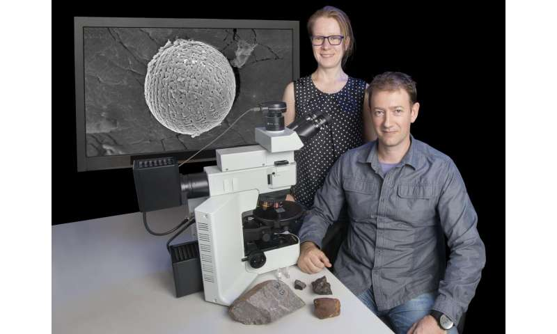 Cosmic dust reveals Earth's ancient atmosphere