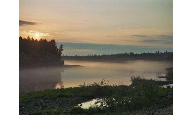 Dark taiga under threat through climate change