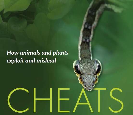 Deception and trickery are rife in natural world, scientist says in new book